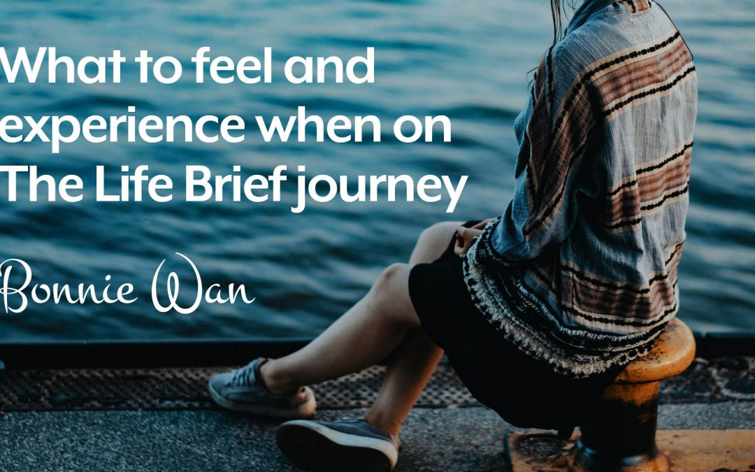 What to feel and experience when on The Life Brief journey