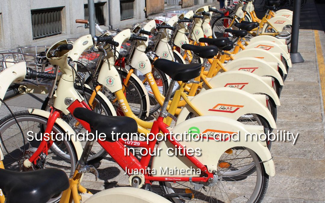 Sustainable transportation and mobility in our cities