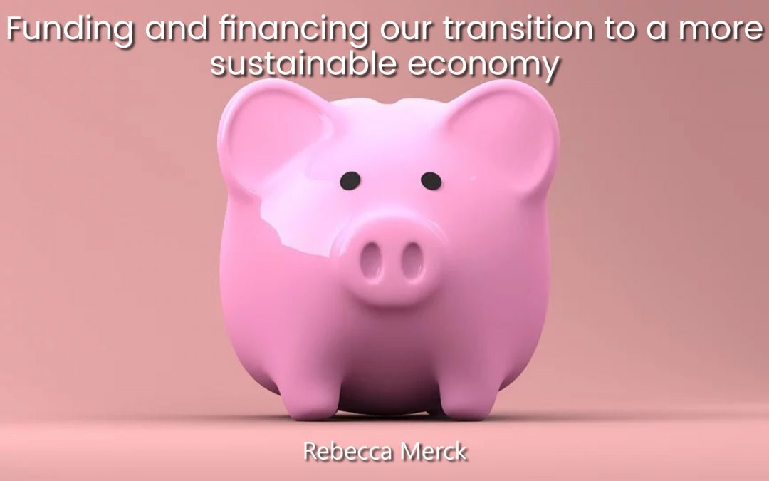 Funding and financing our transition to a more sustainable economy